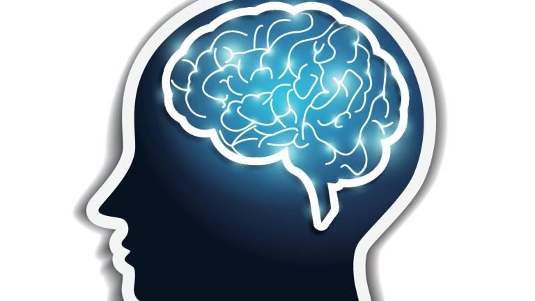 Diez -o más- curiosidades sobre el cerebro humano